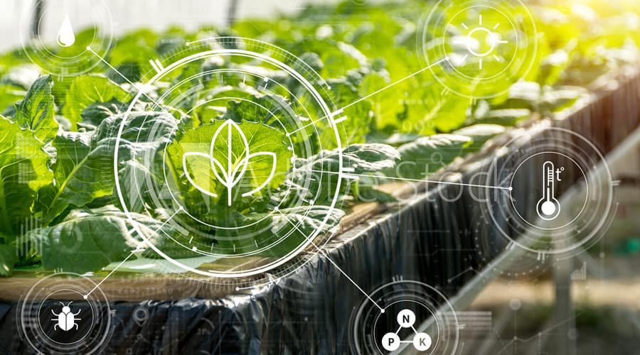 Artificial Intelligence in Agriculture: Will it help Achieve Food Security?